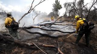 50 000 души са евакуирани в Калифорния заради пожарите
