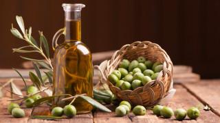 Турция иска да бъде световен лидер в износа на маслини и зехтин. Ще успее ли?