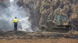 Горските пожари в Австралия са предвестник за бъдещето на планетата
