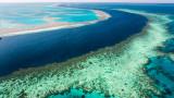 """Големият бариерен риф оцелял при пет климатични """"смъртоносни събития"""""""