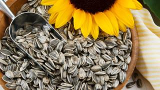 Малките семки с голяма полза за здравето