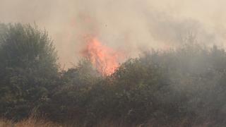 Потушен е пожарът между селата Ъглен и Бежаново