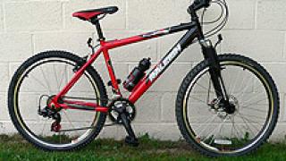 8 месеца затвор за кражба на колело