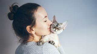 Как стресираме котката, без да го осъзнаваме