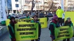 """Активисти на """"Грийнпийс"""" протестираха в Пловдив за пчелите"""