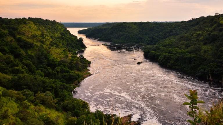 Химическите концерни бълват в Нил отрови, част от мръсната канализация