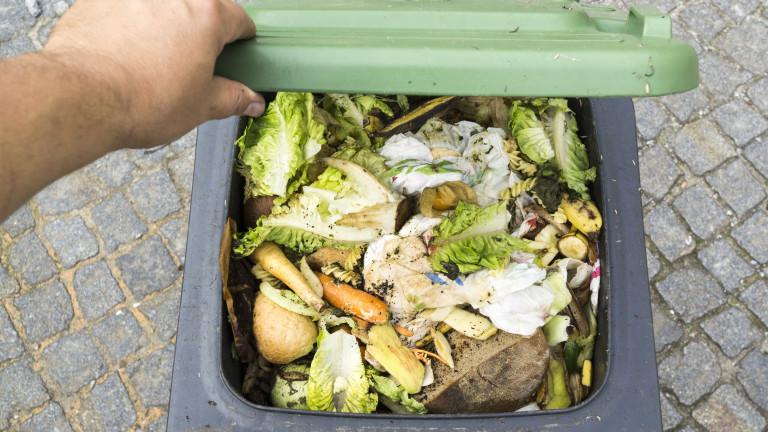 Храната на боклука, вместо в чинията