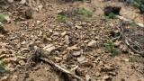 Укрепват свлачище, застрашило къщи в Асеновград