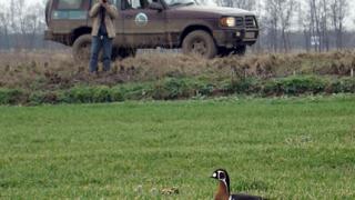 По-малко птици зимуват вече в България
