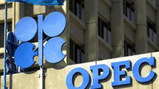 ОПЕК ще се намеси, ако петролът продължи да пада