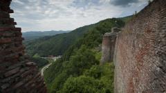 Затвориха замъка на Дракула заради мечки