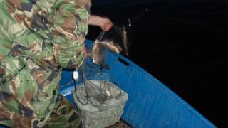 Пияни бракониери опънаха мрежа в езерото в центъра на Монтана