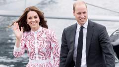 Официално: близнаци в Двореца няма да има