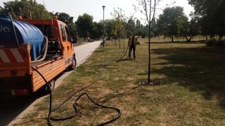 Подпомагат поливането на градските дървета в София