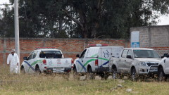 9 жертви и един ранен при престрелка в Мексико