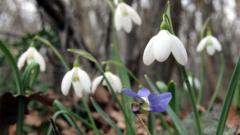 Днес настъпва пролетта!