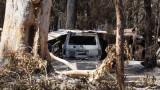 Безпрецедентна катастрофа в Австралия – най-опасните горски пожари в историята