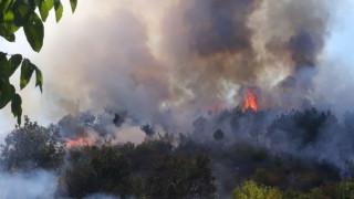 Военни се включиха в гасенето на пожара в Старозагорско