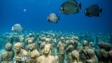 Подводен музей спасява Големия бариерен риф