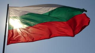 24-метров национален флаг ще поведе шествието във Враца