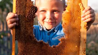 Странджанският манов мед е осмият наш продукт със защитено наименование