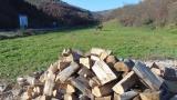 Горските задържаха 5 автомобила с незаконна дървесина