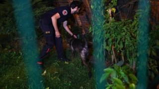 """Турската полиция претърсва вила по случая """"Кашоги"""""""