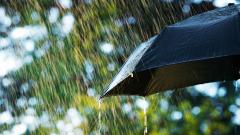 Променлива облачност, дъжд на места