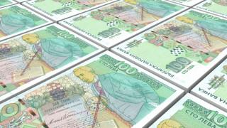 394 000 лв. си взеха депутатите от БСП, без да работят, Два бона за бебе плащат общини