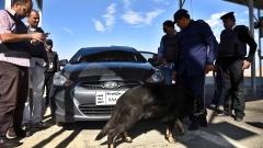 Египетската полиция предотврати мащабен терористичен акт в Кайро
