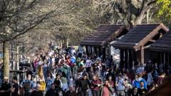 Нарушители на социалната дистанция във Франкфурт нападнаха полицаи