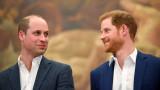 Принц Уилям, принц Хари, статуята на принцеса Даяна и постигнаха ли съгласие