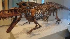 Откриха дядото на динозаврите