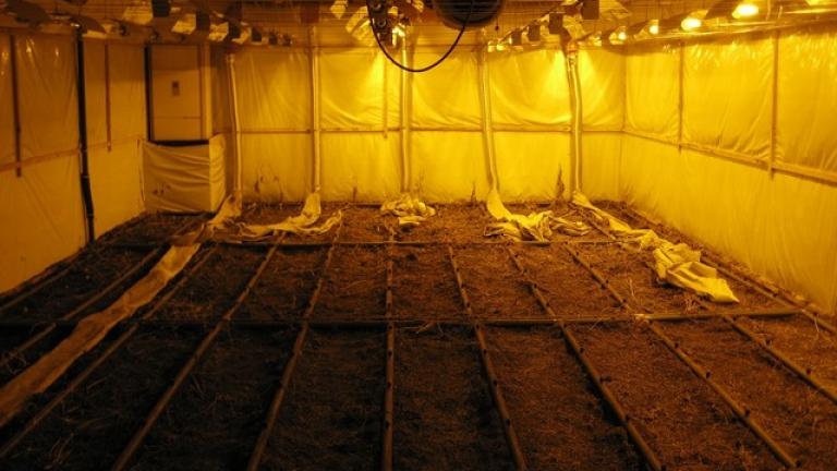 Антимафиоти откриха високотехнологична лаборатория за марихуана в Пазарджик