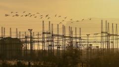 Производствените цени в енергетиката скачат с 11,7% за година