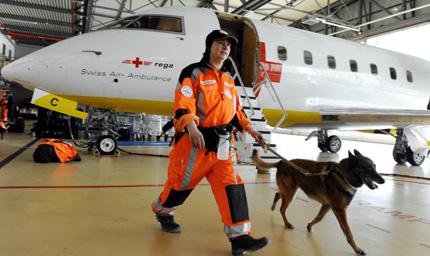 Светът в помощ на Япония