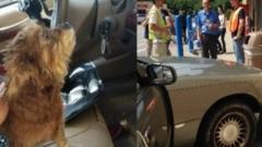 Куче с кола се вряза в супермаркет
