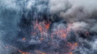 Пожарите в Сибир вече са върху 4.3 млн. хектара, 600 населени места се задъхват
