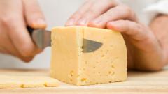 Сиренето си е сирене, постанови евросъдът