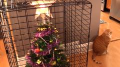Уникални идеи как да предпазите елхата от котката си (СНИМКИ)