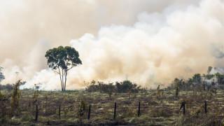 Пожар лумна до старозагорско село