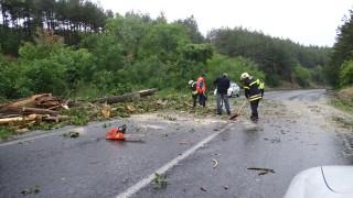 Частично разрушени пътища след бурята в Две могили