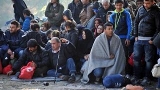 """""""Без отпечатъци от пръсти!"""", скандират имигранти в Лампедуза"""