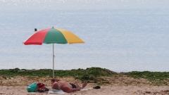Ангелкова брани дюните от хавлиите и човешките тела