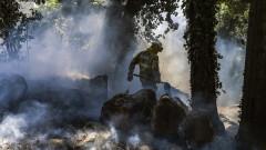 Пожари опустошават седем дни Алгарве в Португалия