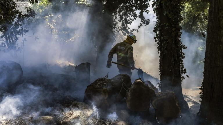 Повече от 1000 пожарникари се борят седми дни с огнен