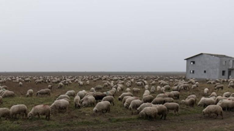 Румъния съди местен пастир, който пречи на работата на американските