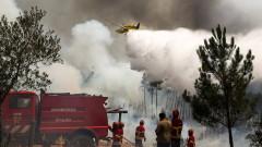 Над 30 души са ранени от пожарите в Португалия