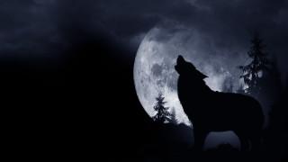 Вълчата Луна е все по-близо