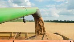 Ценови срив на зърнените пазари